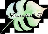 The Essential Face Logo